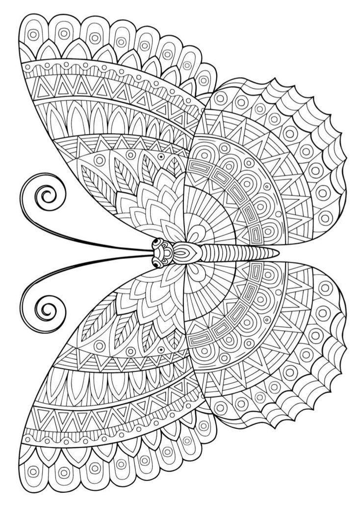 Mr Pyp Butterfly Coloring Page Mandala Coloring Pages Coloring Pages