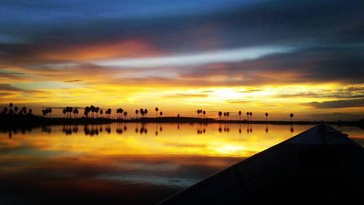 Amanecer en el Pantanal desde la lancha sobre el Río Negro . . #Paraguay #Pantanal #LosTresGigantes #BahiaNegra #AltoParaguay #PantanalParaguayo #StayWeird #landscape #landscapephotography #landscape_lovers #landscapephoto #landscapes #landscaper #view #outdoor #outdoors #travelphotography #travelpics #travelphoto  #traveler #travel #instatravel #traveling #travels #wanderlust #wildandfree #sunrisephotography #sunrisephoto #sunrisepic