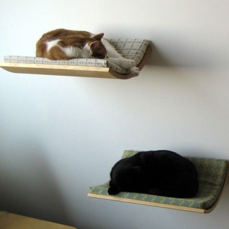 Curve pet bed. wall mounted. Bentwood in Maple veneer. Linseed oil finish. White powder coated mounting brackets. Easy installation – only 2 holes are required for mounting. cushion is removable and washable