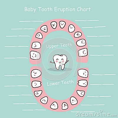 103 best Ideas - Tooth Fairy Pillow images on Pinterest A child - baby teeth chart