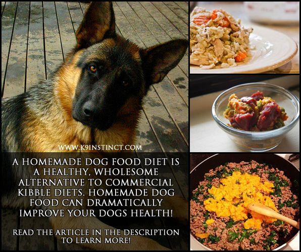 Image result for german shepherd food advice