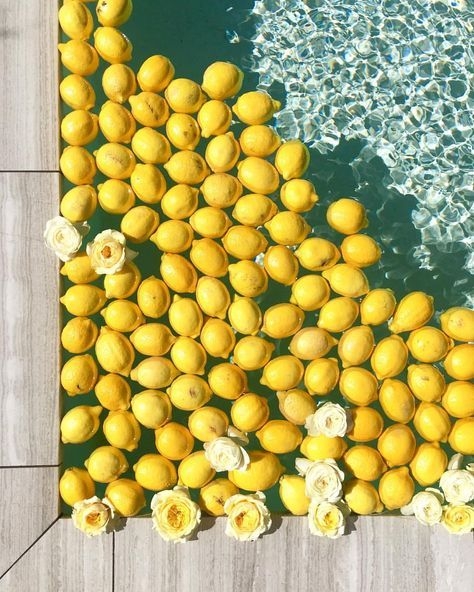 Summer! Yellow lemons in a swimming pool