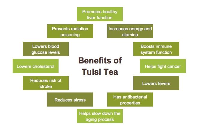 medicinal uses of tulsi