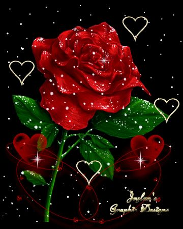 A ROSE FOR YOU LOVE~♡~♡~♡