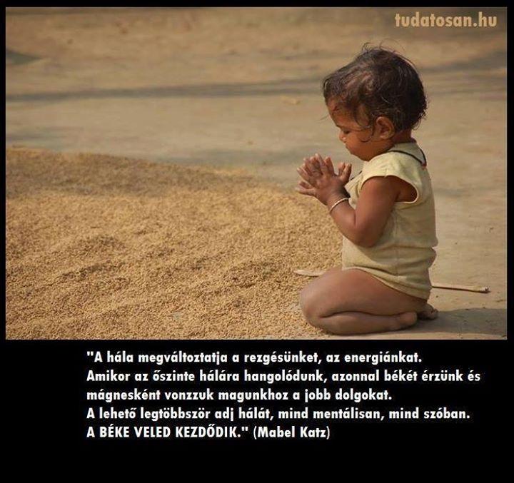 Mabel Katz gondolata a háláról. A kép forrása: Tudatos életmód
