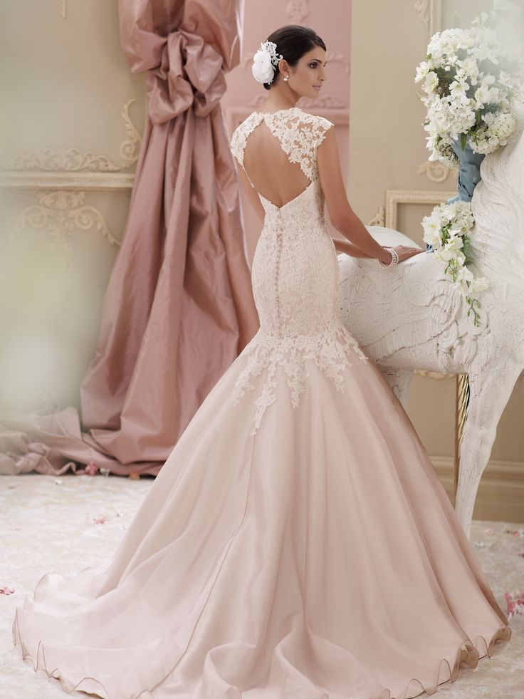12 best images about david tutera spring 2015 on pinterest for David bridal lace wedding dresses