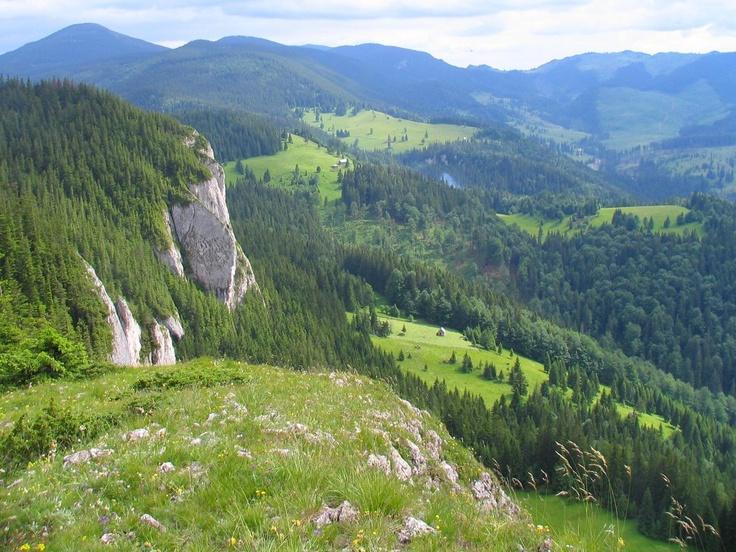 Bucsin tető - Erdély (Transilvania)