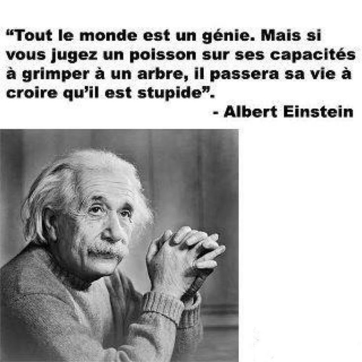 "Citation de Einstein:  ""Everybody is a genius. But if you judge a fish by its ability to climb a tree, it will live its whole life believing that it is stupid.""   > > > Click image!"