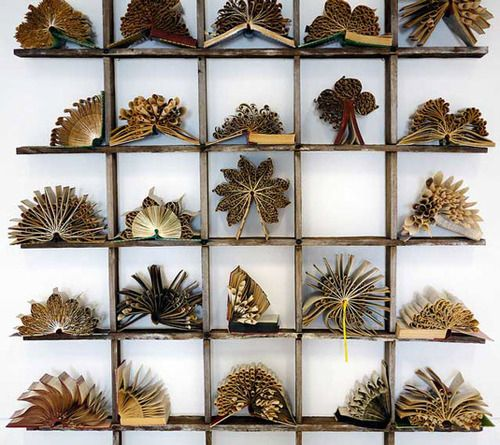 Australian artist Pam Langdon transforms discarded books into intricate paper sculptures inspired by plant and marine life.