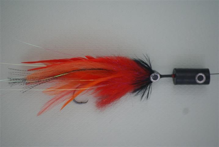 Saltwater fly and popper