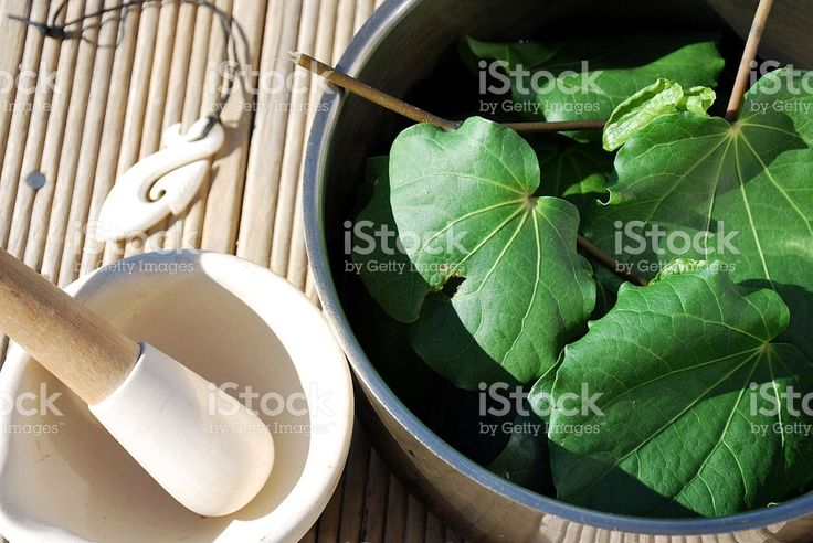 Rongoā, Traditional Māori Plant Medicine Kawakawa Background royalty-free stock photo