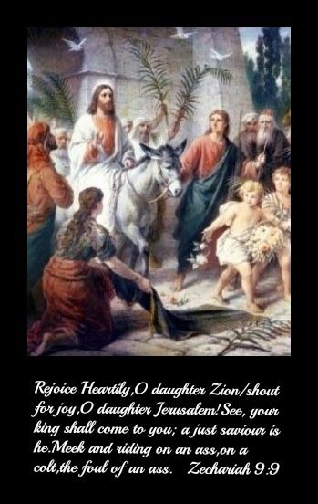 Zechariah 9 Donkey 13 best images about P...