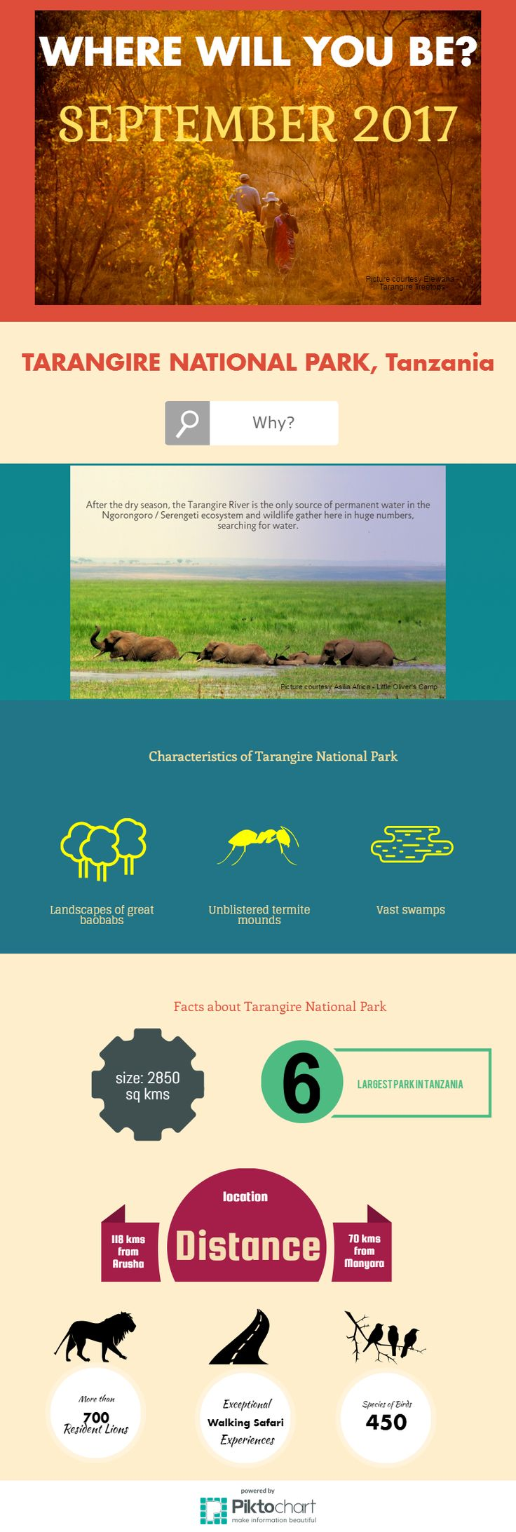 Where's the best place to go on safari in September? Tarangire National Park, Tanzania. Find out why
