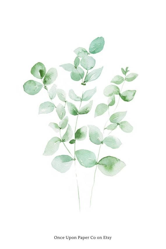 Eucalyptus Leaves Tropical Leaf Prints Eucalyptus Gift For Her