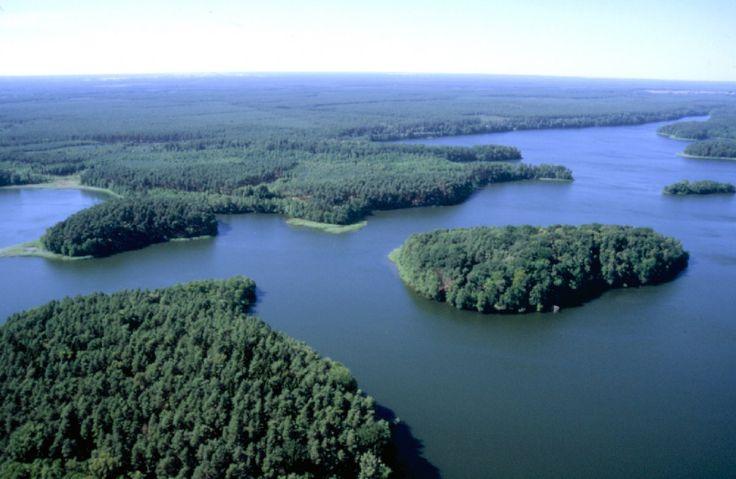 [3/15] W centrum regionu,  Drawieński Park Narodowy fot. Czasnojć w środkowym odcinku rzeki Drawy utworzono Drawieński Park Narodowy dla zachowania Puszczy Drawskiej. Na terenie parku znajduje się 14 jezior rynnowych oraz torfowiska. Z roślin objętych ochroną występują tu m.in. rosiczki i storczyki. Wśród chronionych zwierząt są ryby, płazy, gady, ptaki i ssaki.