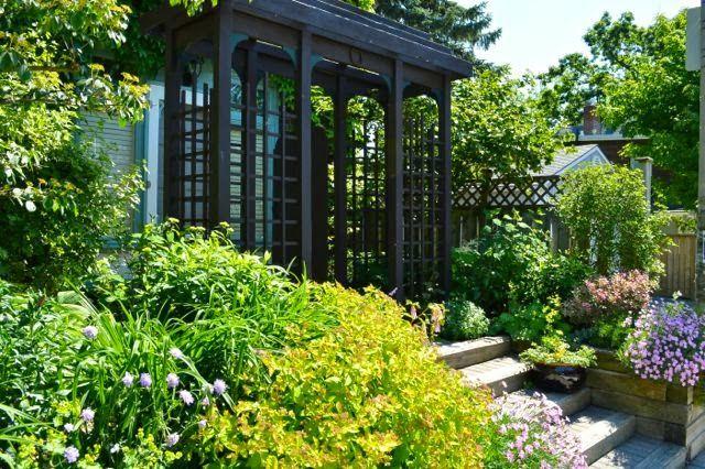 Toronto Gardens: Beach Garden Tour, my favourite garden