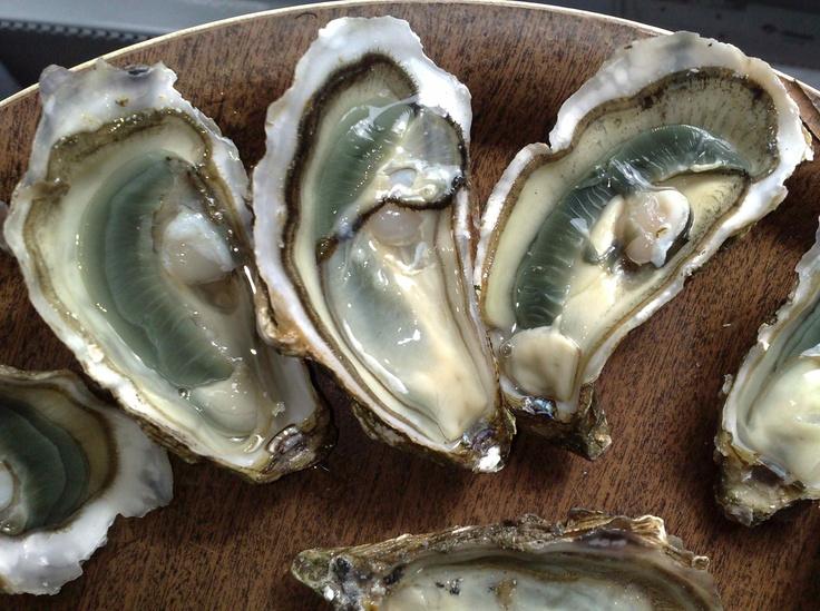 Food heaven: huitres ile D'Oleron France