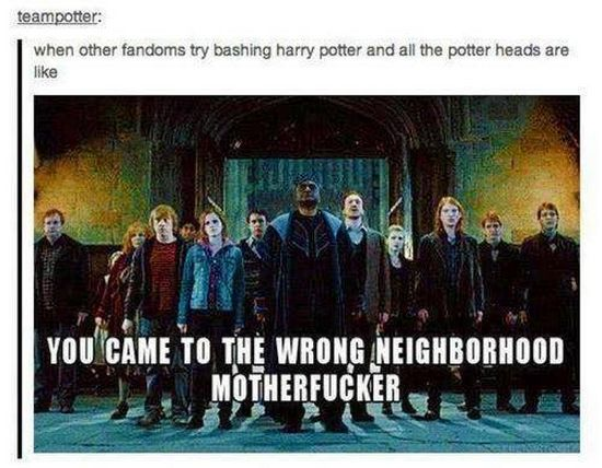This is a warning to all fandoms out there. DONT PISS OFF THE HARRY POTTER FANDOM. They will DESTROY you.