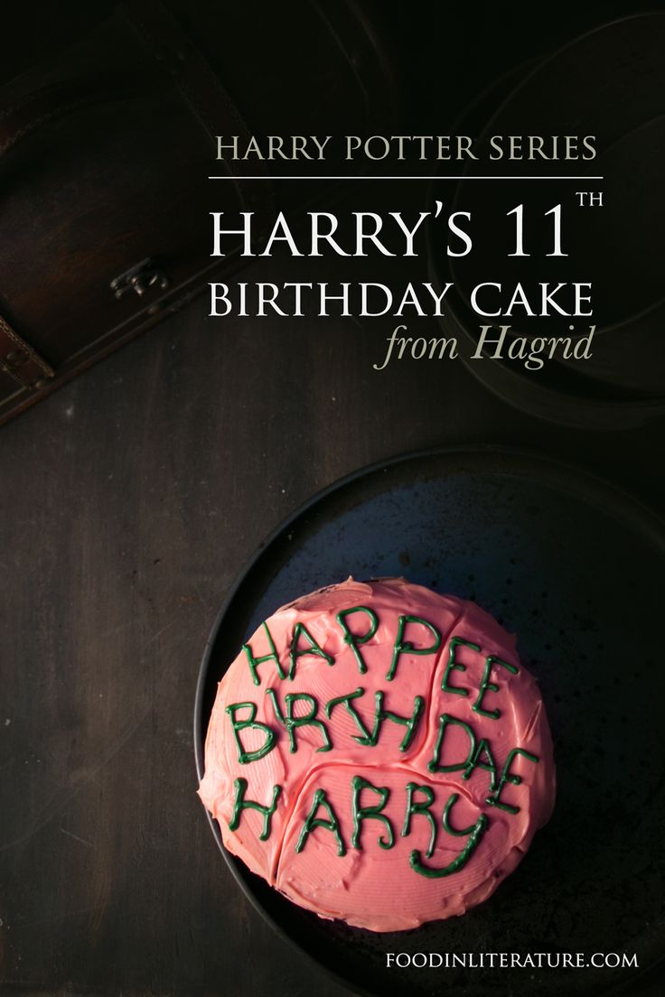 Celebrate Harry's birthday this July 31st, with the sticky chocolate cake Hagrid made him for his 11th birthday. The moment Harry was told, 'Harry--yer a wizard'.