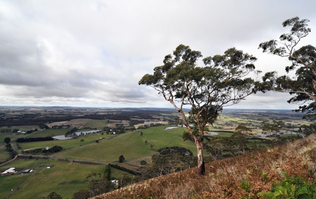 the view from Mt Buninyong in Victoria, Australia.
