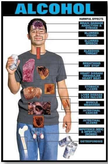 Alcohol affects your whole body! | Alcohol Abuse | www.hawaiianrecovery.com | #recovery #alcohol #sober |