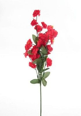 Niezapominajka 44 Cm Czerwona Plants Red Peppercorn Red