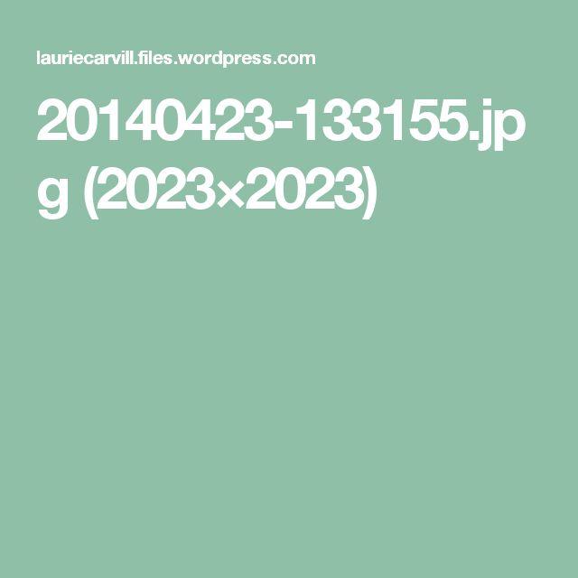 20140423-133155.jpg (2023×2023)