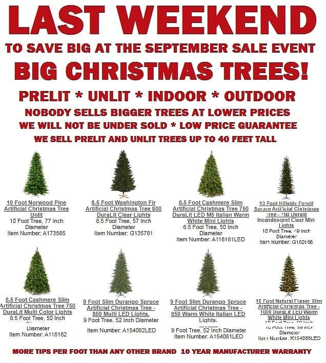 Last Weekend To Save Big Christmas Trees Lights Outdoor