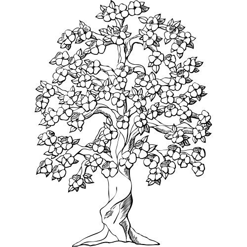 101 best coloring pages images on pinterest | drawings, coloring ... - Cherry Blossom Tree Coloring Pages