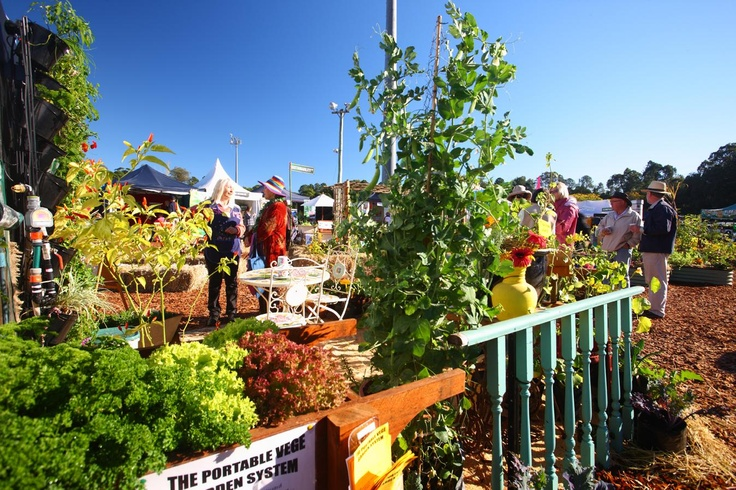 The beautiful Kitchen Garden area at the 2011 QLD Garden Expo