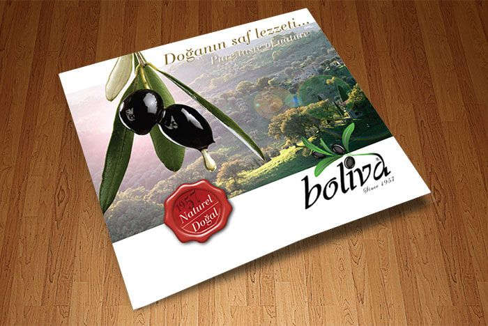 Boliva Katalog Tasarımı