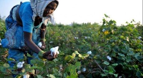 India seeks debate on climate 'lifestyles' at Paris