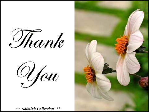 Flowers of Life: Thank You Card 19