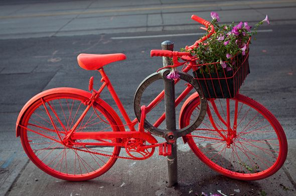 """Regent Park is a part of """"The Good Bike"""" project, which is an installation of neon bikes with flowers popping up in neighborhoods across the city that """"promote the ethos of regeneration and community that sparked their creativity""""."""