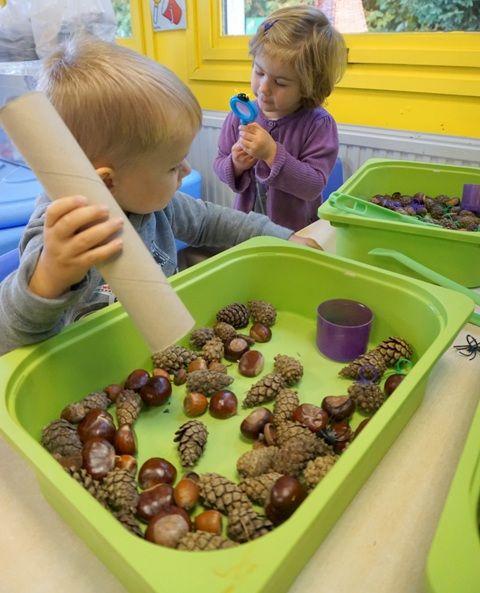 Je legt allerlei herfstmateriaal zoals noten,kastanjes,eikeltjes in een doos daarbij geef je de kindjes ook een keukenrolletje.De peuters kunnen het herfstmateriaal door de keukenrol laten vallen.Ook kunnen ze voelen aan al de materialen.