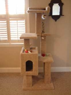 Material and cut list Step by step directions But the right piece of cat furniture can make for a meaningful and lasting pet gift
