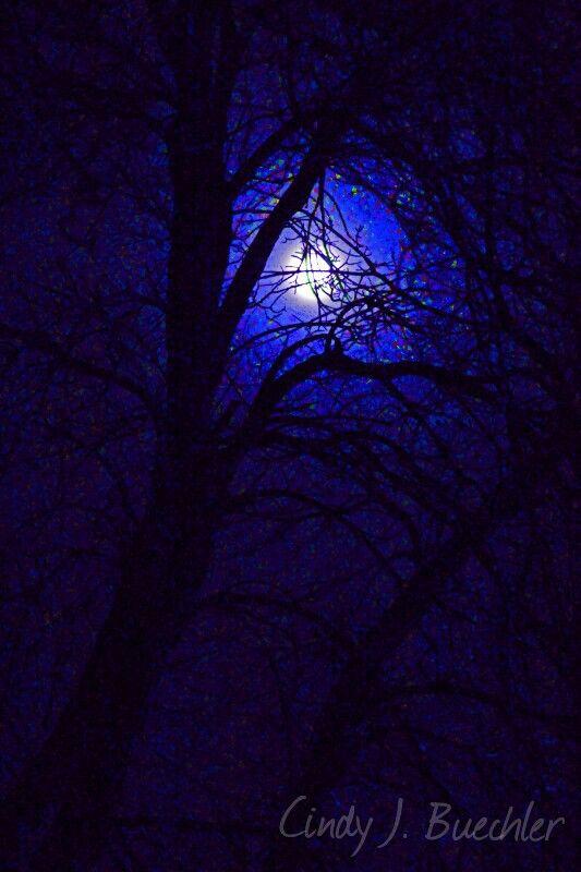 valentine's day moon