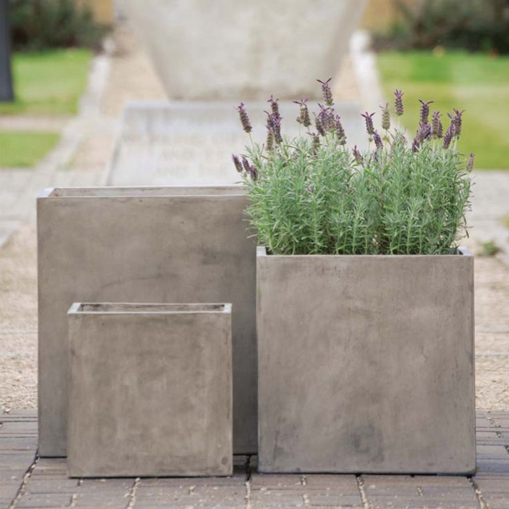 Good Cube Planters Polished Plaster Effect.