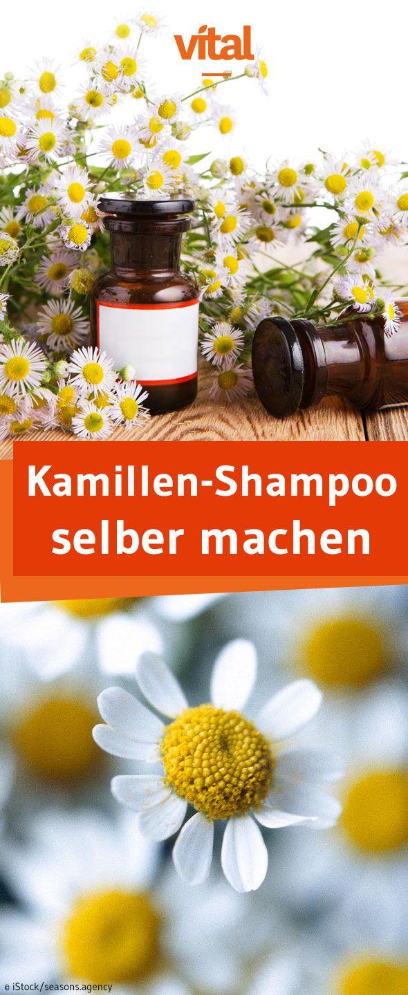 Kamille-Shampoo selber machen: Ihr wollt eure Haare natürlich aufhellen? Dann empfehlen wir Kamille! Sie hellt die Haar nicht nur auf, sondern verleiht zusätzlich einen natürlichen Glanz.