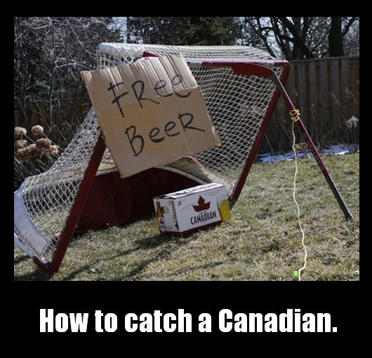 But thankfully it's easy to catch someone in Canada: