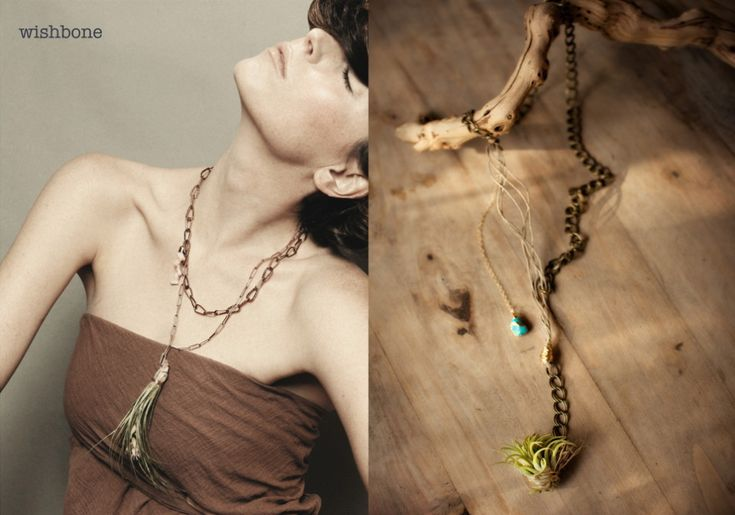 This necklace is made of all sustainable products and materials.. even the plant, TIllandsias, which means air plant! : Living Jewelry, Dream, Living Plants, Plant Necklaces, Air Plants, Tillandsia Air, Plants Inspiráció, Plant Jewelry