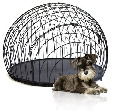 Dog In Kennel Pictures