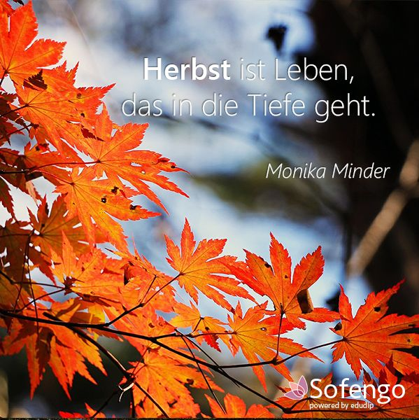 Herbst ist leben das in die tiefe geht monika minder for Zitate herbst