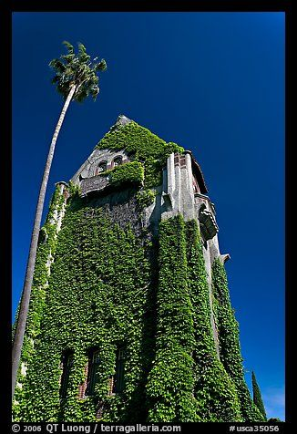 Ivy-covered Tower Hall, San Jose State University.