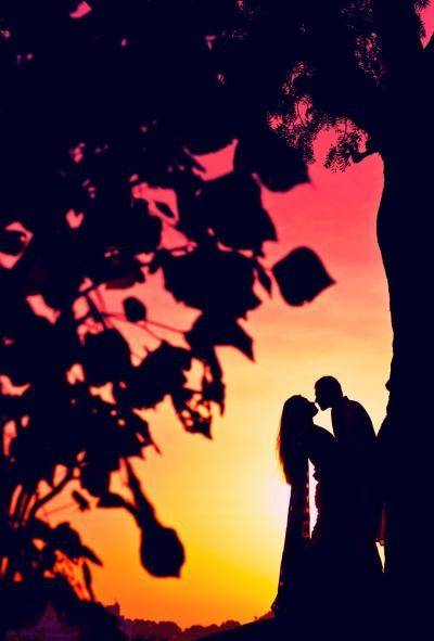 Wedding Krafter Info & Review | Wedding Photographer in | Wedmegood