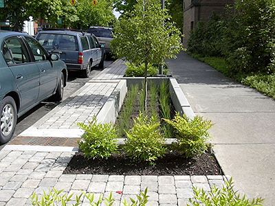 Re-thinking the Urban Streetscape....Water Quality Improvements through Infiltration or Flow-through Planters