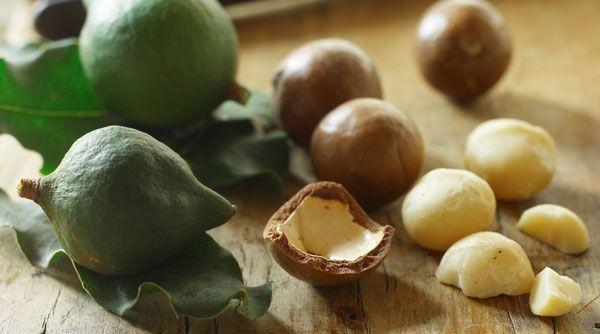 Olej z orzechów makadamia