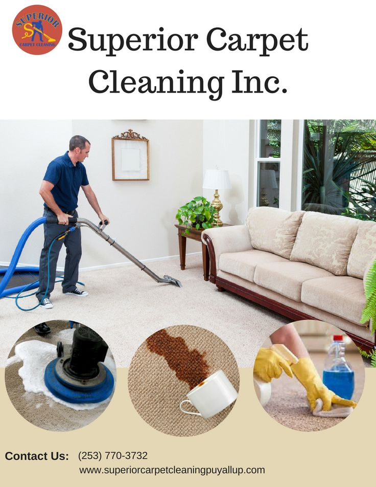 99 Best Carpet Cleaning Images On Pinterest