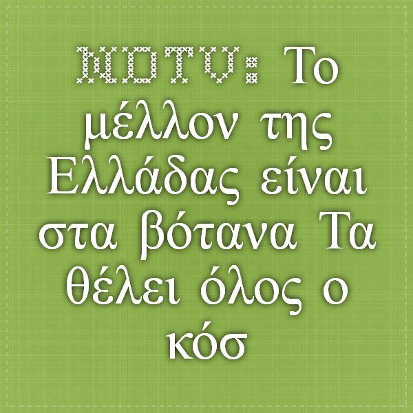 NDTV: Το μέλλον της Ελλάδας είναι στα βότανα -Τα θέλει όλος ο κόσμος, αλλά και οι Αλβανοί που τα... κλέβουν | iefimerida.gr