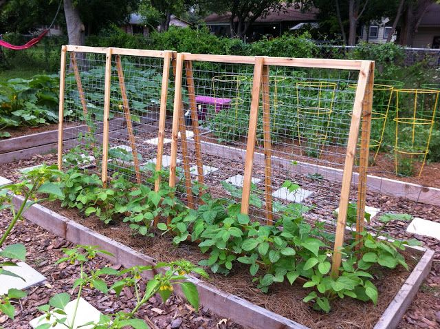 Gorgeous Garden Trellis Projects for Your Yard.  Fun ideas, designs and tutorials.